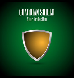 Silver and gold protection shield icon vector