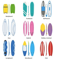 Various Surfboards Set vector image vector image