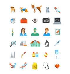 Vet clinic services icons vector