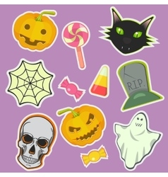 Halloween decoration attributes image vector image