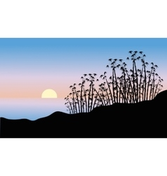 Bamboo tree of silhouette vector