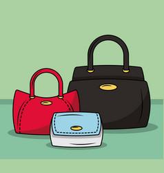 fashion women bags vector image vector image