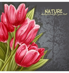 Preview background bouquet of pink tulips for your vector image