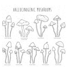 set hallucinogenic mushrooms vector image vector image