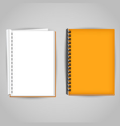 Yellow brochure covered and open vector
