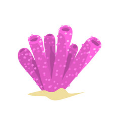 Beautiful purple sponge coral in tube or vase vector