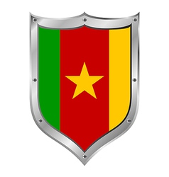 Cameroon flag button vector image