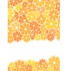 template design cover sliced halves of citrus vector image vector image