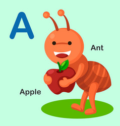 isolated animal alphabet letter a-ant apple vector image vector image