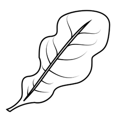 Salad leaves icon outline style vector