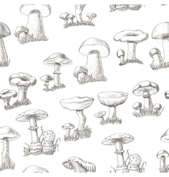Seamless pattern with mushrooms on a white vector image vector image