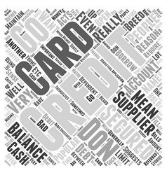 What Do You Mean By A Secured Credit Card Word vector image