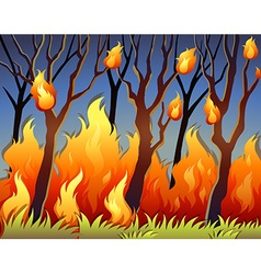 Trees in forest on fire vector image