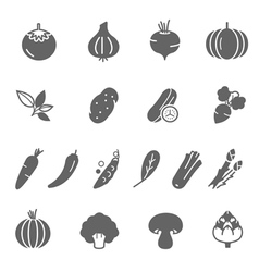 Icon set - vegetable vector