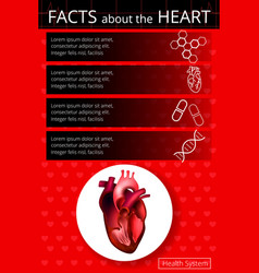 Infographics heart 2 vector