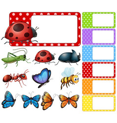 Label template with different types of insects vector