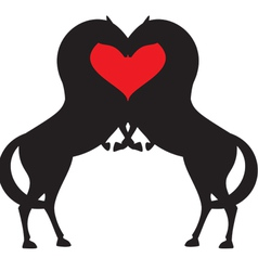 Valentin red hart vector
