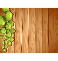 A wooden wall with a vineplant vector