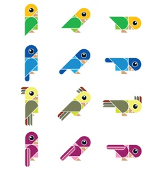 Birdy isolated vector