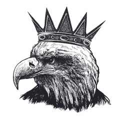 Detailed hand drawn eagle vector