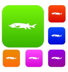 Fresh sturgeon fish set collection vector