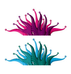 Fantastic underwater plants algae vector