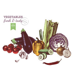 Hand drawn vegetables border vector