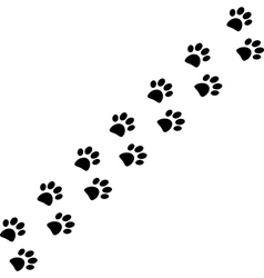 Paw trail vector