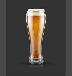 full glass of light lager beer vector image vector image