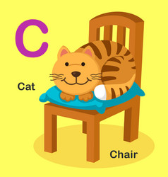 Isolated animal alphabet letter c-cat chair vector