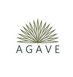 Agave design template vector