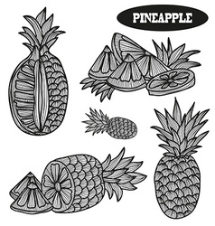 Hand drawn pineapples vector
