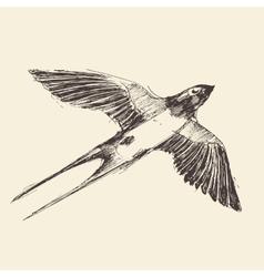 Swallow bird engraved sketch vector