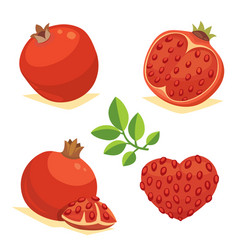 Whole and cut pomegranate icon set cartoon healty vector