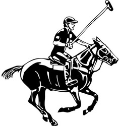 Polo horse and player vector