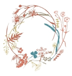 Wreath with meadows herbs vector
