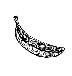 banana ink sketch vector image