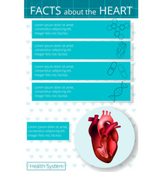 Infographics heart 3 vector
