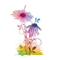 watercolor floral vector image vector image