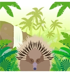 Echidna on the jungle background vector