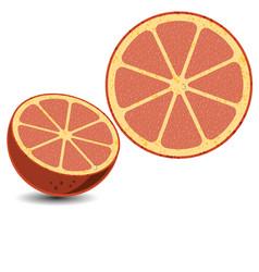 lemon2 vector image