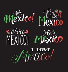 Viva mexico wording vector