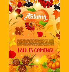 Autumn harvest banner with fall leaf pumpkin vector