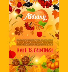 Autumn harvest banner with fall leaf pumpkin vector