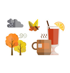 collection of autumn set items the fall acorn vector image vector image