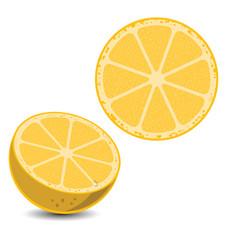 lemon3 vector image vector image
