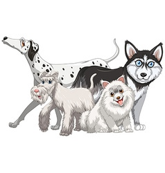 Different kind of cute dogs vector image