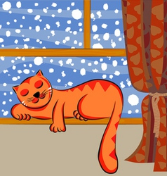 cute cat sleeping vector image vector image