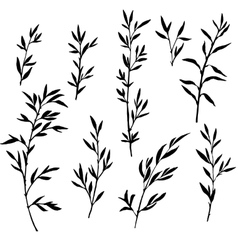 set of tree branches with leaves vector image vector image