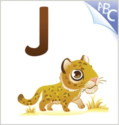 Animal alphabet for the kids J for the Jaguar vector image